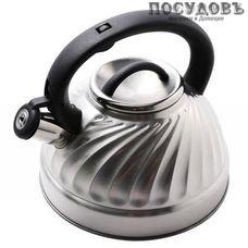 Wellberg WB6645 чайник со свистком объемом 3 л, сталь нержавеющая, Китай, в упаковке 1 шт.