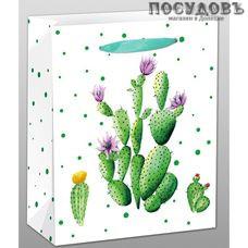 Dream cards Кактус с цветочками ППД-9611 пакет подарочный, 230×180×100 мм, бумага, матовая ламинация